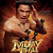 MUAY THAI LIVE (バンコク)